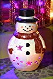 Ravenna Mr. Snowman Christmas Luminary, 13.5-Inch