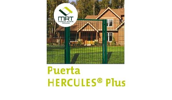 PUERTA HERCULES VERDE PEATONAL 1X1,5: Amazon.es: Bricolaje y herramientas