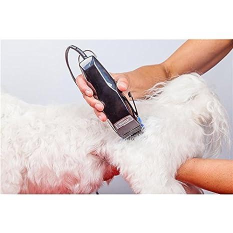 WAHL Moser Juego de máquinas de Cortar Pelo de Animales Fox: Amazon.es: Productos para mascotas