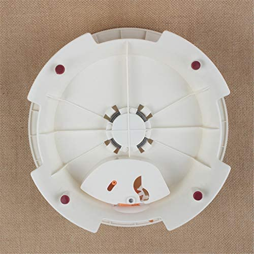 LLJEkieee Tornamesa giratoria para decoración de tartas con bloqueo y escala de claridad (1 mesa giratoria para tartas, 3 cepillos de aceite): Amazon.es: Hogar