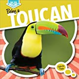Being a Toucan (Can You Imagine?)
