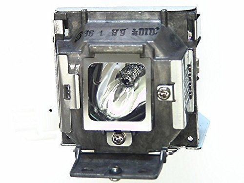 Acer America Projector Lamp for X1230PS EC.K0600.001