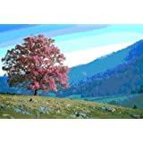 Tree on Hill 11X17 3D Poster Seasons Change MPPLA70129