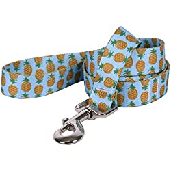 "Yellow Dog Design Pineapples Blue Dog Leash, Large-1"" Wide and 5' (60"") Long"