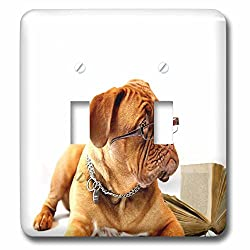 Florene Dog - Image of Mastiff With Reading Glasses And Book - Light Switch Covers - double toggle switch (lsp_245062_2)
