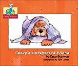 img - for Casey's Unexpected Friend (Casey's World) book / textbook / text book