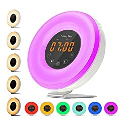 Sunlight Alarm Clock,Best Sunrise Wake Up Light with 6 Nature Sounds For Heavy Sleepers.FM Radio, Touch Control With USB Charger, Sunset Simulator Alarm Clock