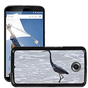 Hot Style Cell Phone PC Hard Case Cover // M00108161 Benaulim Goa Beach Bird Fly Wings // LG Google Nexus 6
