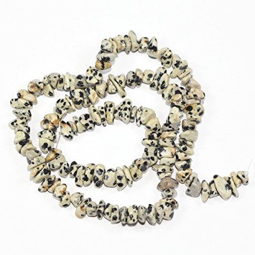 - 5 Strands Natural Dalmatian Jasper Gemstone Smooth Gem Chips 5-8mm Loose Stone Beads 34 Inch/Strand for Jewelry Craft Making GZ1-3