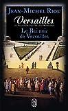 Versailles, le palais de toutes les promesses, Tome 2 : Le Roi noir de Versailles (1668-1670)