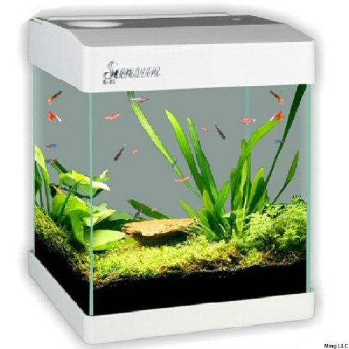 Sunsun g 20 nano glass aquarium kit 2 5 gallon white for 20 gallon fish tank kit