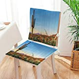 Mikihome 2 Piece Set Chair Cushion Sun Goes Down in Desert Prickly pear Cactus Southwest Texas Natial Park Perfect Indoor/Outdoor Mat:W17 x H17/Backrest:W17 x H36