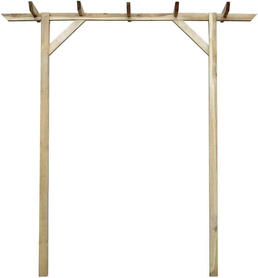 Fesjoy Arco del jardín para la Escalada de Plantas y Rosas pérgola ...