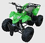 A Good Deal For A Good Product - High Quality Gas Saving Adult/KIDS 110cc PRO ATV Desert Storm Type-S Quad Racer LT Series Clone w/ Fully Automatic, Wide Body, Speed Limiter