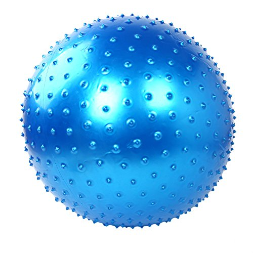 Ezyoutdoor 75cm Exercise Fitness Aerobic Ball for Household Fitness Workout GYM Yoga Pilates Pregnancy Birthing thickening for Household Training Workout Fitness