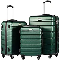 COOLIFE Luggage 3 Piece Set Suitcase Spinner Hardshell Lightweight TSA Lock (Dark green3)
