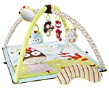 Skip Hop Baby Activity Gym – Woodland Friends Review