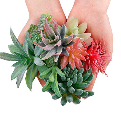 Miracliy Assorted Artificial Succulents Picks Textured Aloe Faux Succulent Stems Fake Succulent Bouquet String of Pearls and Lotus Landscape Decorative Garden Arrangement Decor,9 Pack (Succulent Faux)