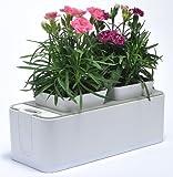 VASO SMART, vaso elettronico intelligente - Smart Mini Garden Smart Herb Garden Indoor Pot