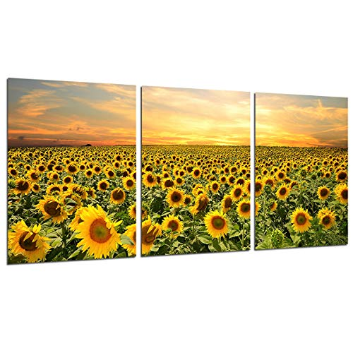 - Sunflower Wall Art Canvas Painting -Unframed Flowers Home Decor Nature Pictures Sunset Posters and Prints Kitchen Decoration Wall Paintings for Living Room Modern Floral Artwork 3 Panels 12x16''