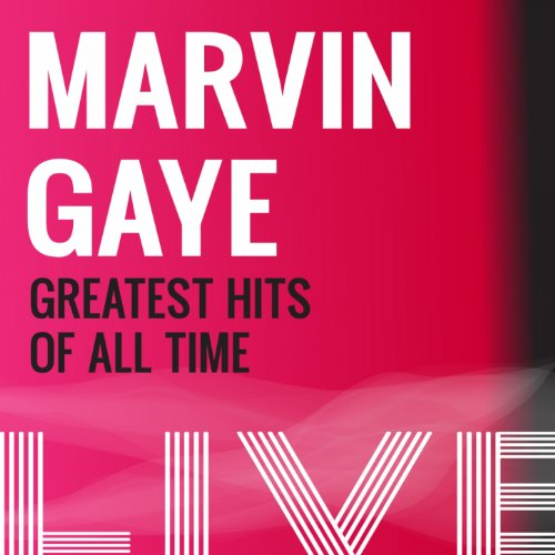 Marvin Gaye Greatest Hits (Sexual Healing (Live))