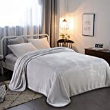 RISAR Flannel Luxury Queen Size Blanket Soft Warm Cozy Plush Throw Fuzzy Microplush Lightweight for Bed Sofa Couch 90 by 90 Inches,Gray