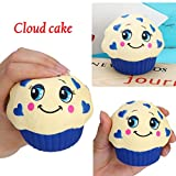Yeefant Stress Relief Extrusion Toys Random Yummy Cloud Cake...