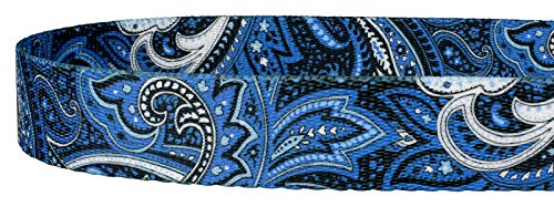 Image of Country Brook Design 5/8 Inch Blue Paisley Dog Leash - 6 Foot