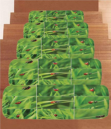 - Coral Fleece Stair Treads,Ladybug,Ladybug Over Fresh Grass Collection Divided Collage Vibrant Life Lawn Foliage Theme,Green Red,(Set of 5) 8.6