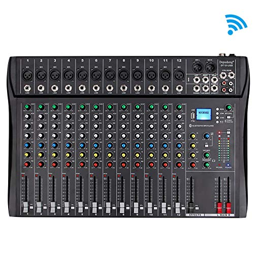 Depusheng Professional 12 Channel