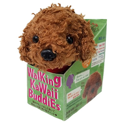 Best Buddy Poodle (Best Ever Japan Walking Cute Buddies Toy Poodle 49056)