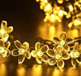 Rextin 23ft 50 LED Blossom Solar String Lights Warm White Waterproof Outdoor for Gardens - Lawn - Patio - Christmas Trees - Weddings - Parties Decoration (Warm white)