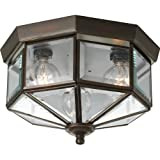 Best Progress Lighting Light Bulbs - Progress Lighting P5788-20 Octagonal Close-To-Ceiling Fixture with Clear Review