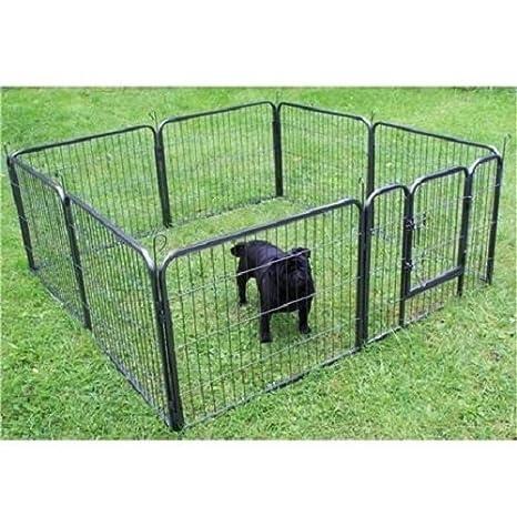 animalmarketonline cerca jaula Valla Caseta para perros gatos Conejos Cavie 8 x 80 x 120 cm: Amazon.es: Productos para mascotas