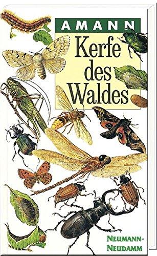 kerfe-des-waldes