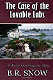 The Case of the Lovable Labs (The Thousand Islands Doggy Inn Mysteries) (Volume 12)