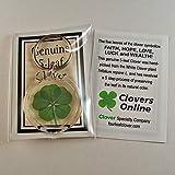 Clovers Online Genuine 5 Leaf Clover Keychain