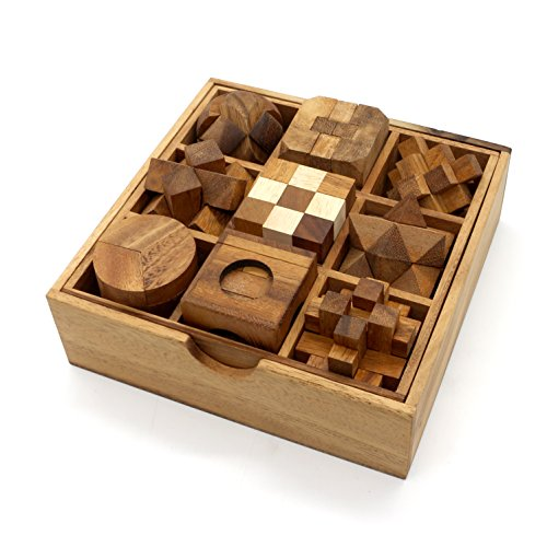 BSIRI 9 Unique Puzzles a Set Handcrafted Mini Brain Teasers Interlocking Wooden Puzzle Sets -