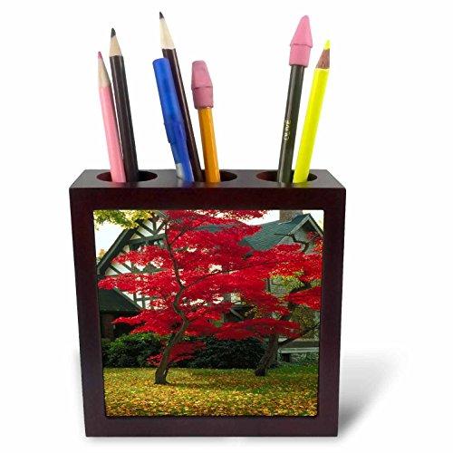 3dRose TDSwhite - Miscellaneous Photography - Pretty Foliage Tudor Home - 5 inch Tile Pen Holder (ph_285426_1) ()