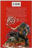 Saint Seiya Lost Canvas Hades 12 (Shonen Manga) (Spanish Edition)