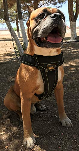 Dog Vest Harness Padded Adjustable Heavy Duty Attachment Links Strong Dog Harness Step in Dog Harness Large Dogs Sturdy Enough for Any Breed | Pitbull Boxer Husky Rottweiler Belgian Malinois Bulldog ()