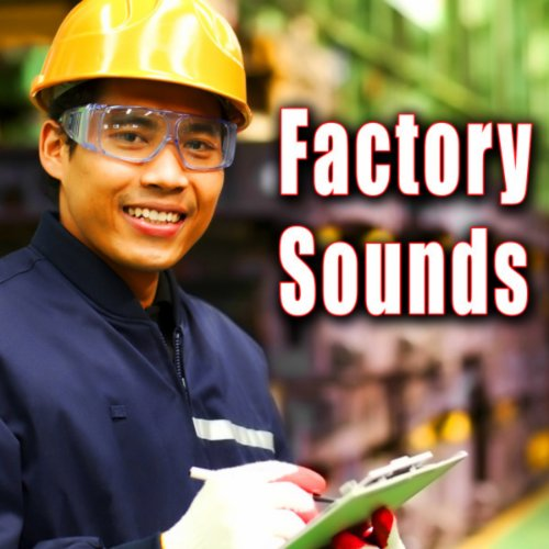 Aircraft Assembly Plant with General Ambience, Hammering & Pneumatic Tools