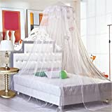 Airstomi Elegant And Romantic Lace Curtain Dome Princess Bed Canopy Mosquito Netting - White