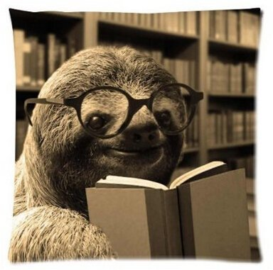 Unique Style Funny Sloth Reading Books Home Decorative Throw Pillow Covers Zippered Square Twin Sides Printing Pillowslip Pillow Protector 18X18 Inch -