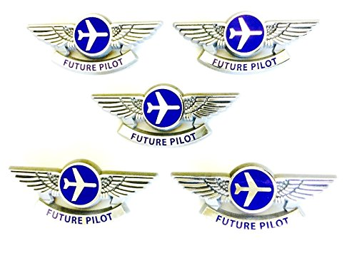 Aviator Kids Party Favors Airplane Silver Future Pilot Wings Plastic Pins Lot of 5 by Aviator