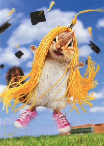 Chipmunk Wears Tassel - Avanti Funny Graduation Card