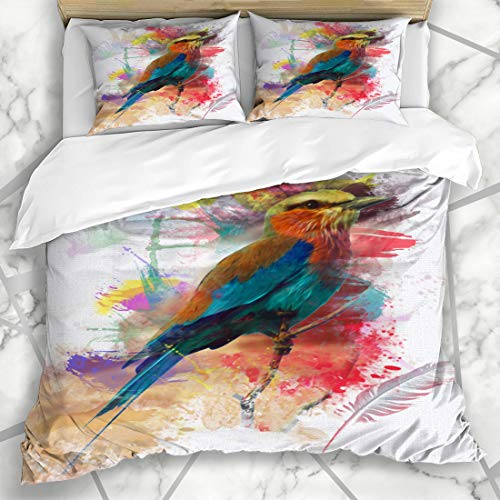 - Ahawoso Duvet Cover Sets King 90x104 Art Feather Abstract Bird Colorfull Eye Paint Nature Lilac Breasted Roller Artistic Watch Microfiber Bedding with 2 Pillow Shams