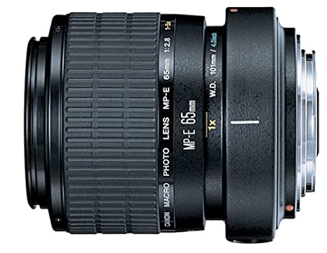 Review Canon MP-E 65mm f/2.8
