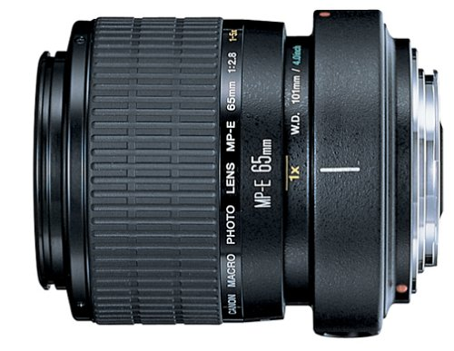 Canon MP-E 65mm f/2.8 1-5X Macro Lens for Canon SLR Cameras