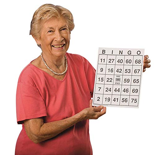 - Hasbro Large-Print Bingo Cards (Set of 25)